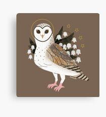 Familiar - Barn Owl Canvas Print