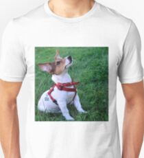 adorable jack russell terrier  puppy obedient dog Unisex T-Shirt
