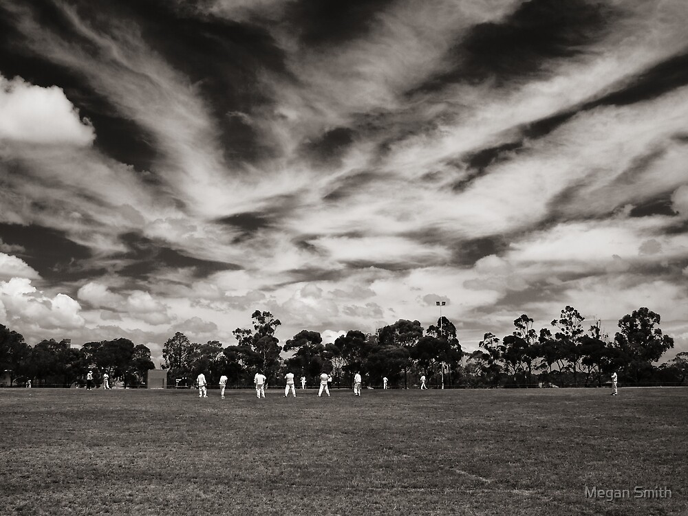 Local Cricket by Tim Smith