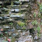 Castle Wall Details #3 by kalaryder