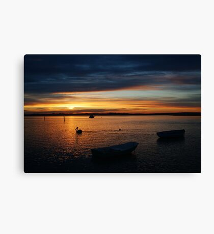 Swan Bay Sunset, Queenscliff Canvas Print