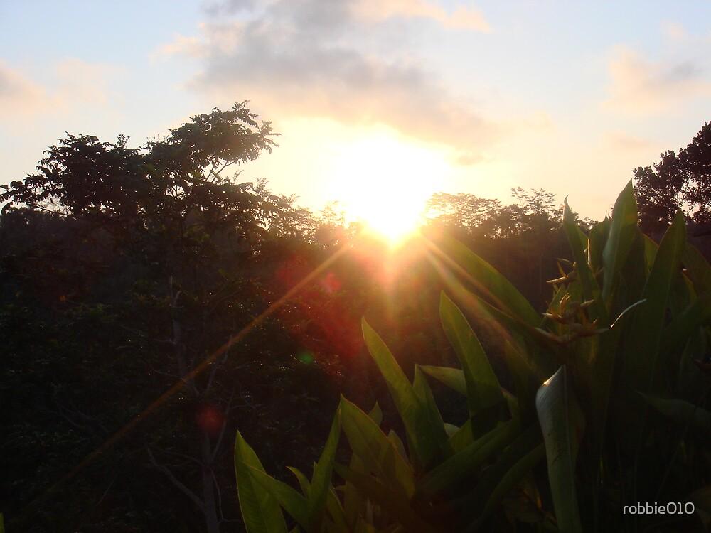 Bali Sunset VII by robbie010