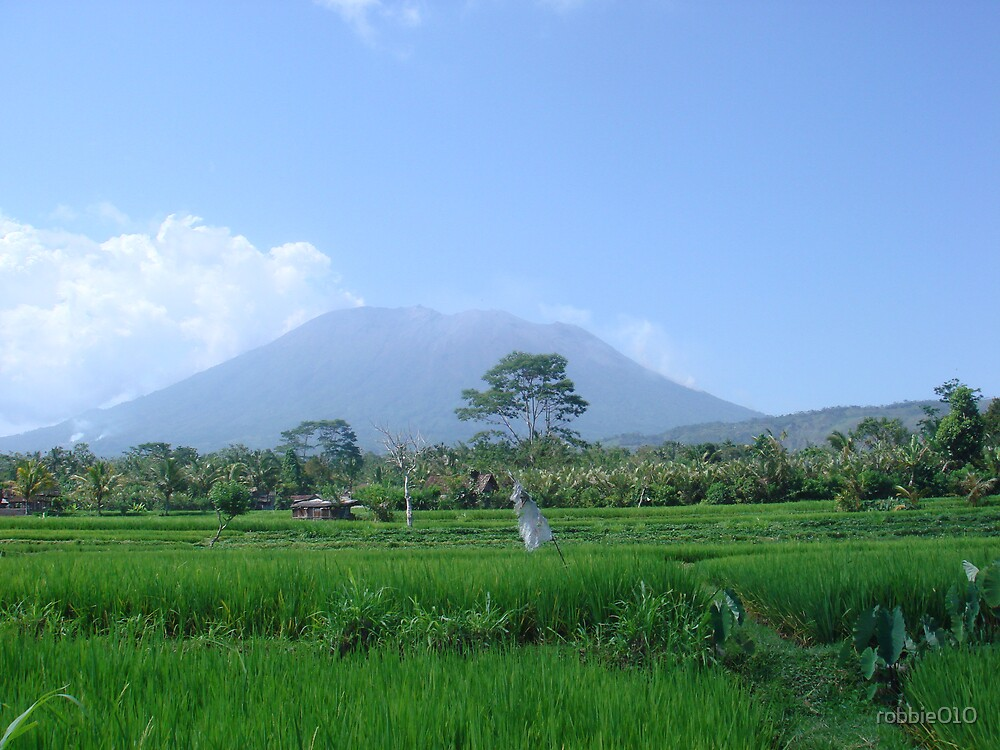 Volcano by robbie010
