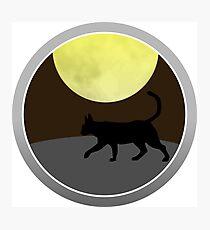 Cat Walk at Night Photographic Print
