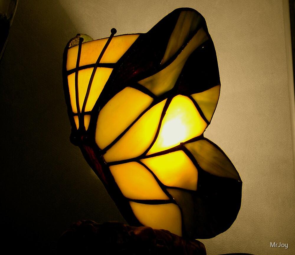 butterfly by MrJoy
