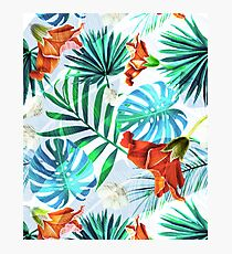 Tropical fiesta - sunset Photographic Print