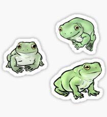 Whites Dumpy Treefrogs Sticker