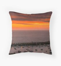 Gorey from above Throw Pillow