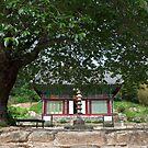 Mireuk Temple Near Geumsan by koreanrooftop