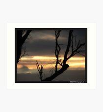 Outback Sunset - Raymond Terrace, Nsw Art Print