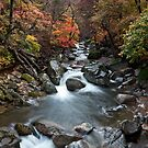 Gayasan National Park in Autumn by koreanrooftop