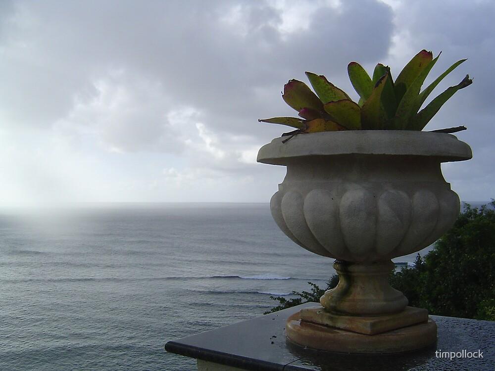 Kauai Dusk by timpollock