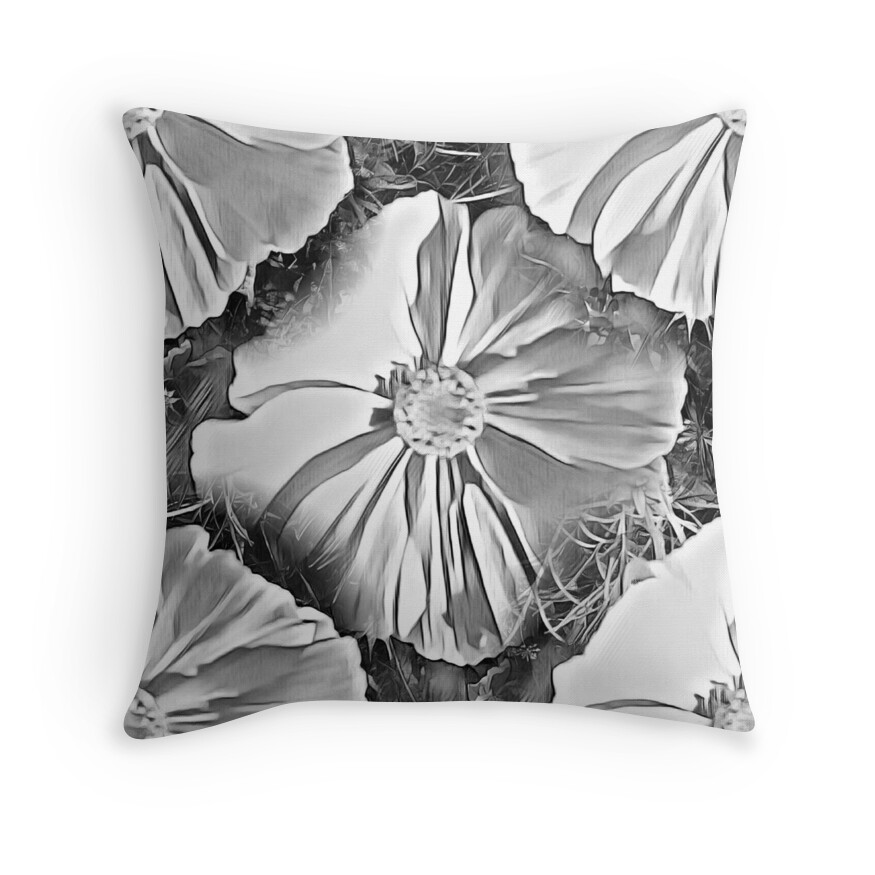 Big Black Decorative Pillows :