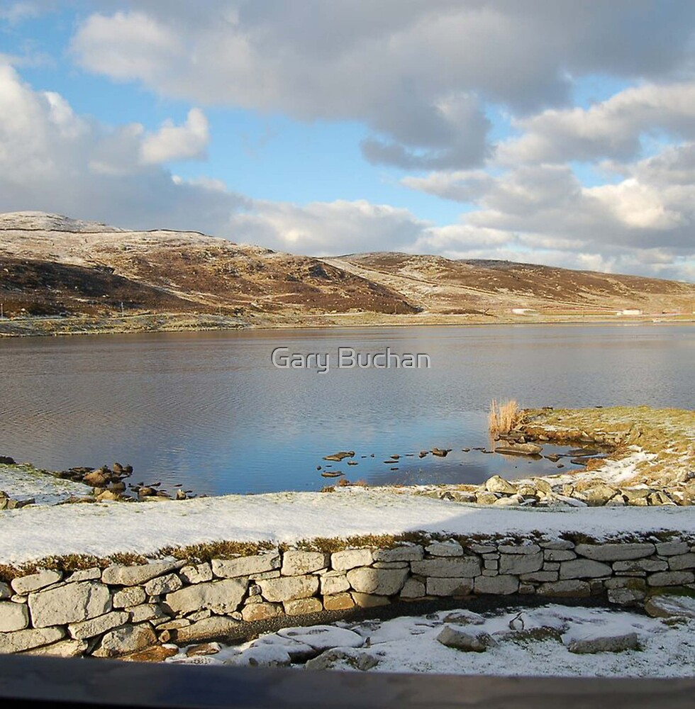 View Across The Loch by Gary Buchan