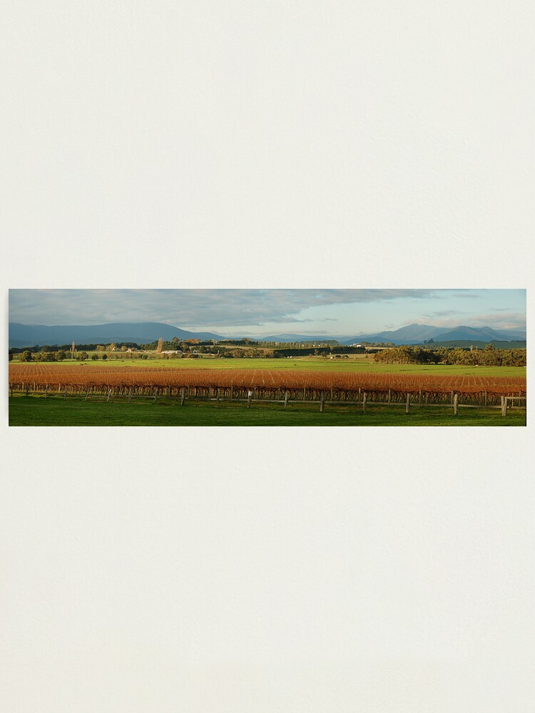 Alternate view of Yarra Valley Photographic Print