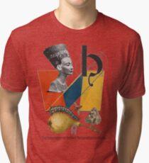 The International Artifact Restoration Institute. Tri-blend T-Shirt