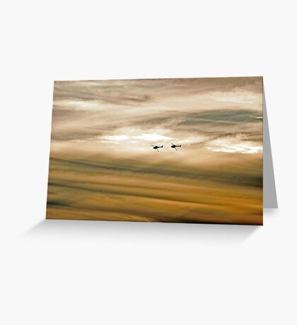 Helitankers At Sunset  Greeting Card