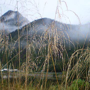 Milford Sound 2 by Hippo
