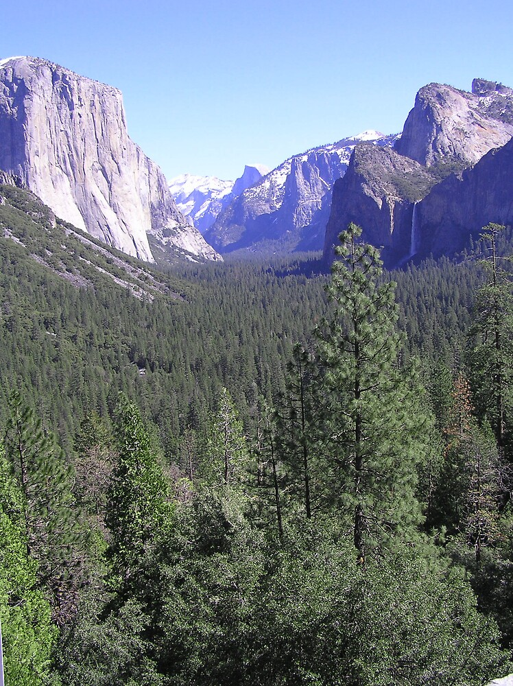 Yosemite Blue Sky I by J K Scott