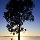Sunrise on Lake Mulwala by Michael Eyssens