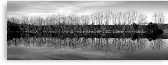 Mitchell River Black & White by Neil