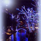 Riverwalk,  Christmas Lights by Charmiene Maxwell-Batten