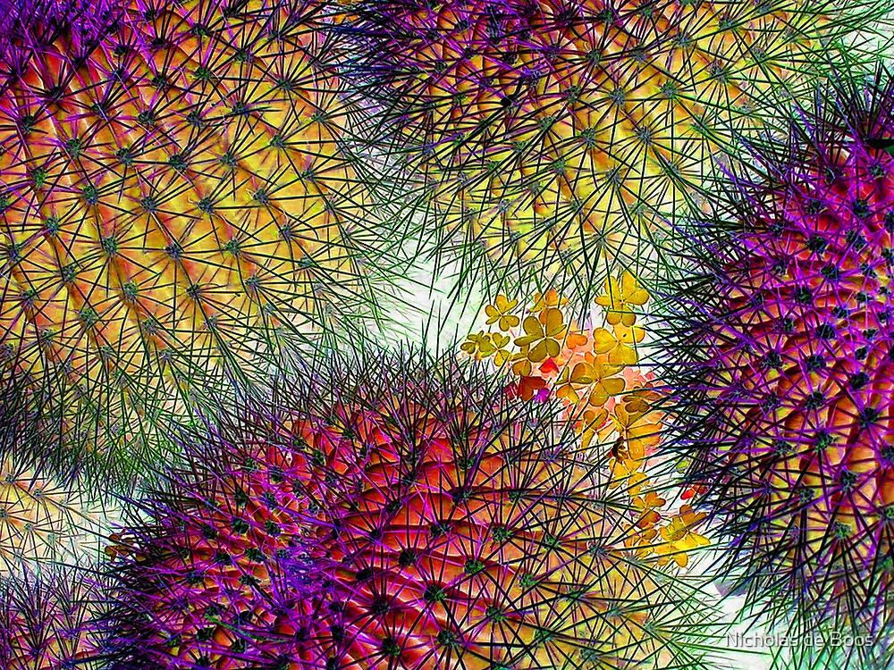 Succulent by Nick de Boos