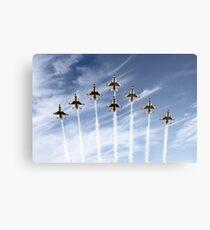 The US Air Force Thunderbirds Metal Print