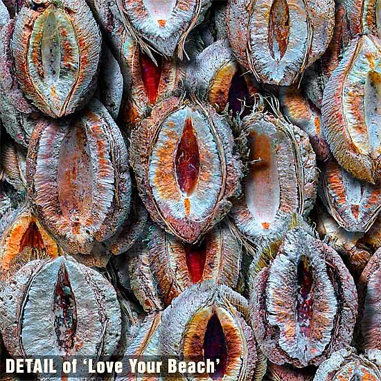 This is a detail of 'Love Your Beach' by Michael Critchley