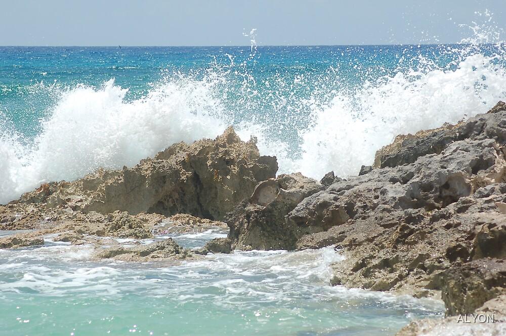 WAVES CRASHING by ALYON