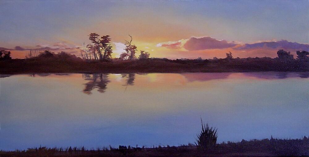 Manning's Lake by Martin Clarke