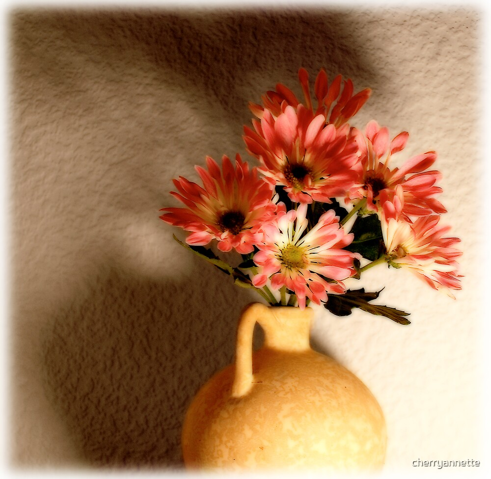 Pink petals by cherryannette