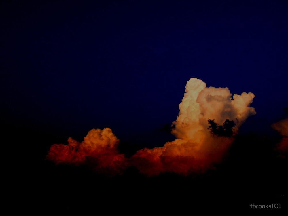 In the Dark. by tbrooks101