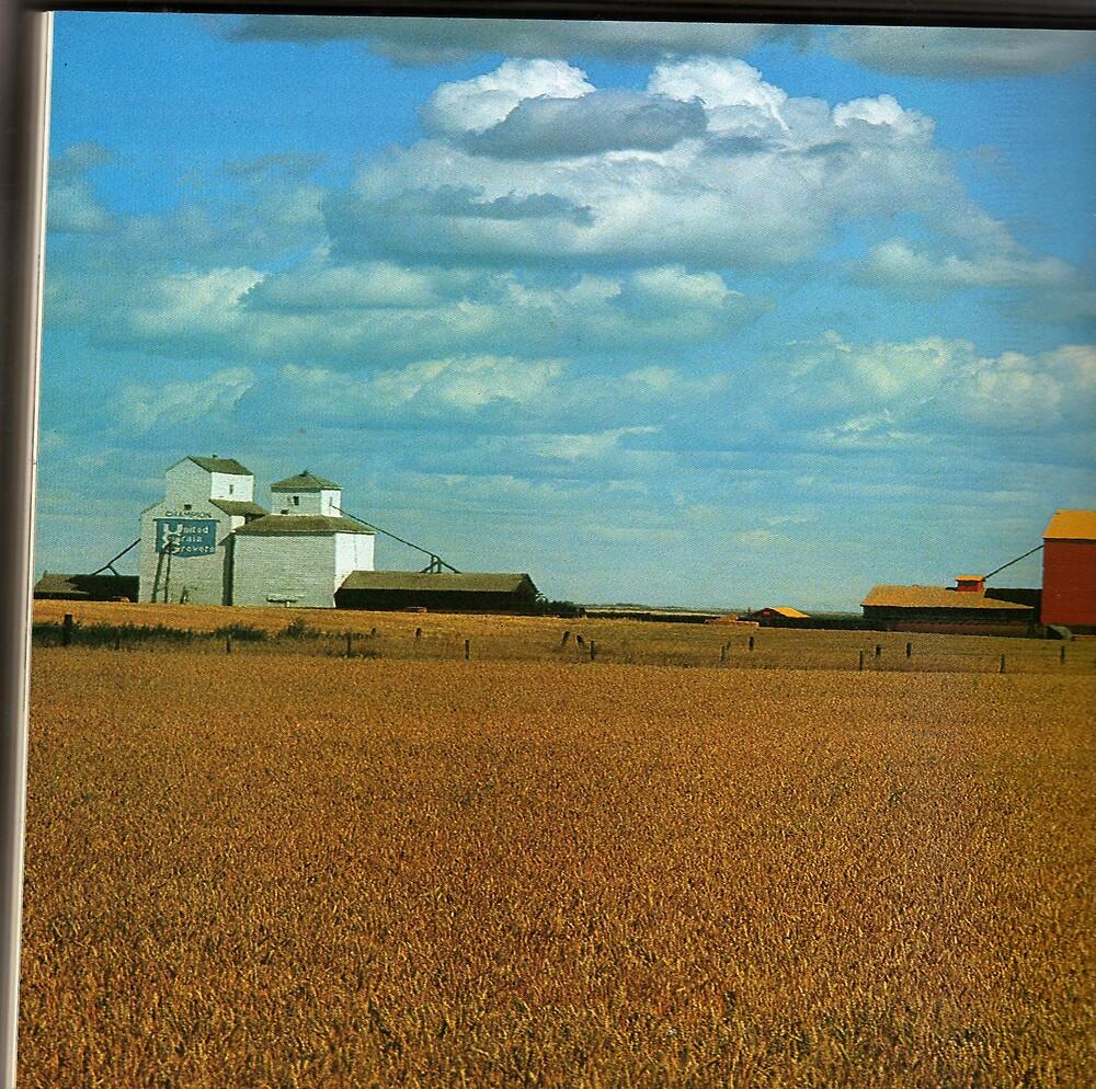 alberta cropland by oilersfan11