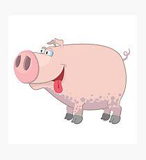 Funny cartoon pig Photographic Print