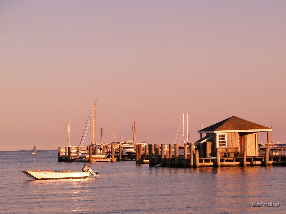 Evening at Hyannisport by LizAndino