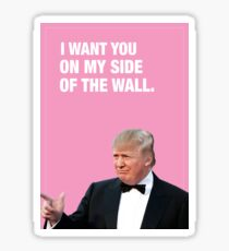 I Want You On My Side Of The Wall - Trump Valentine Sticker