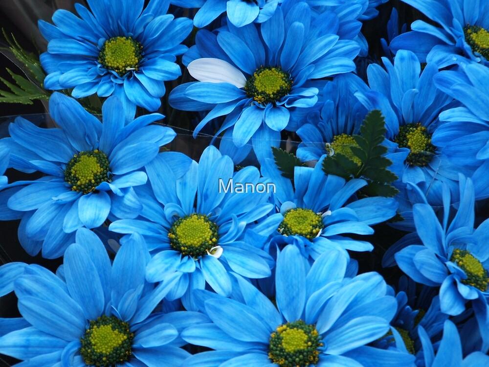 Dames en bleu by Manon