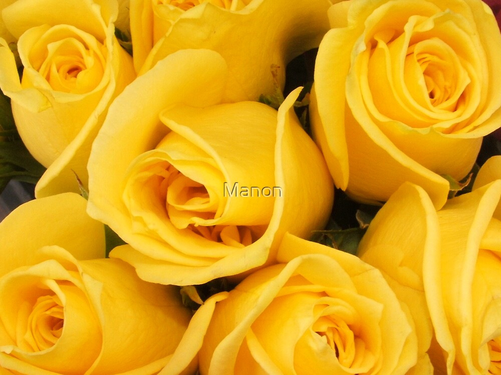 Waking up to yellow by Manon