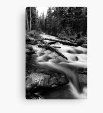 Mountain Force Canvas Print