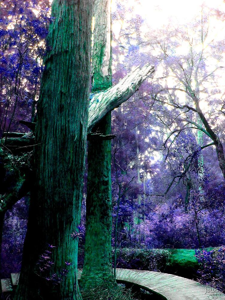 Purple Haze by jaws