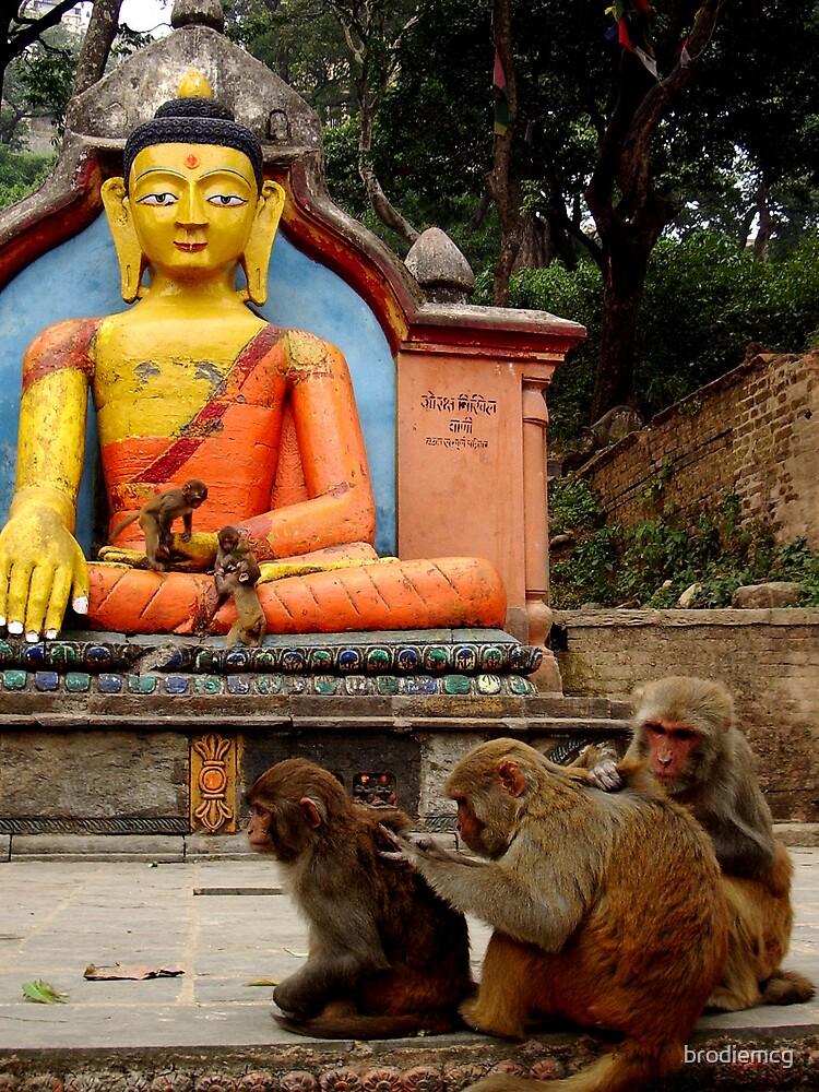 buddhas monkeys by brodiemcg