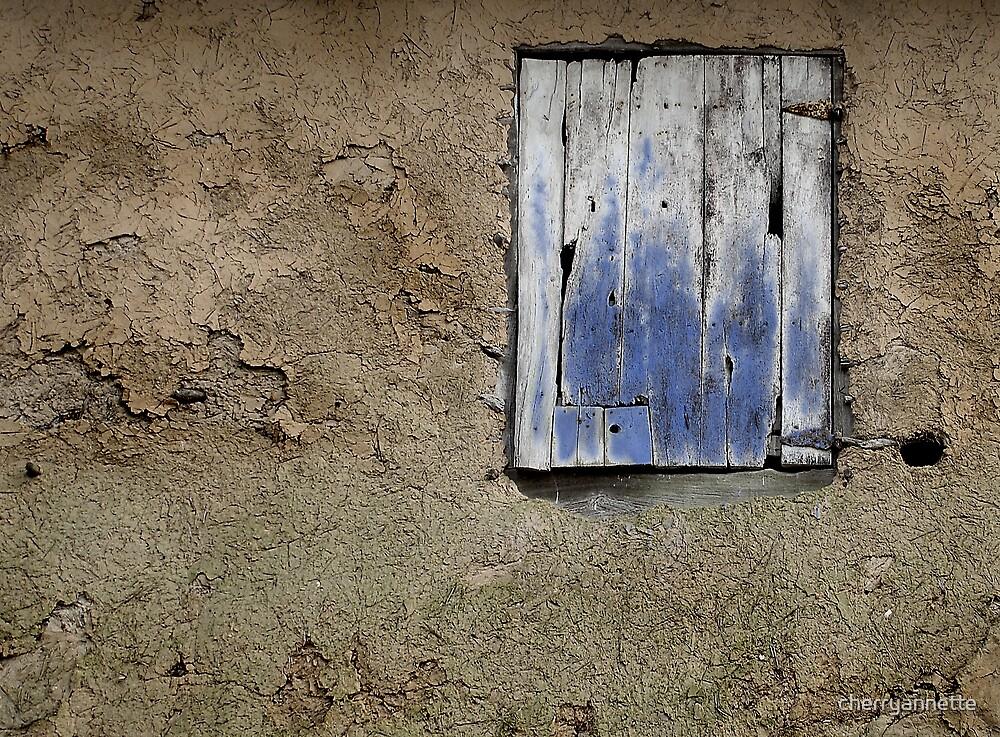 Blue door by cherryannette