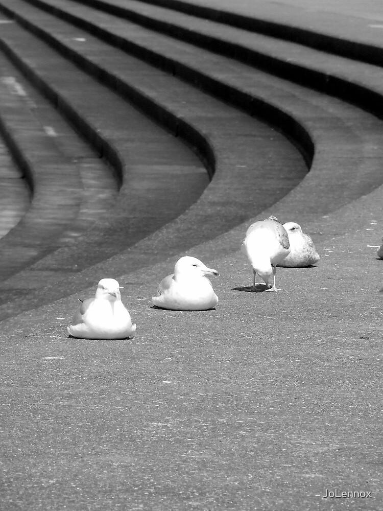 Sea Gulls & Steps by JoLennox