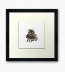 Baby Raven / Black Bird in Watercolor Framed Print