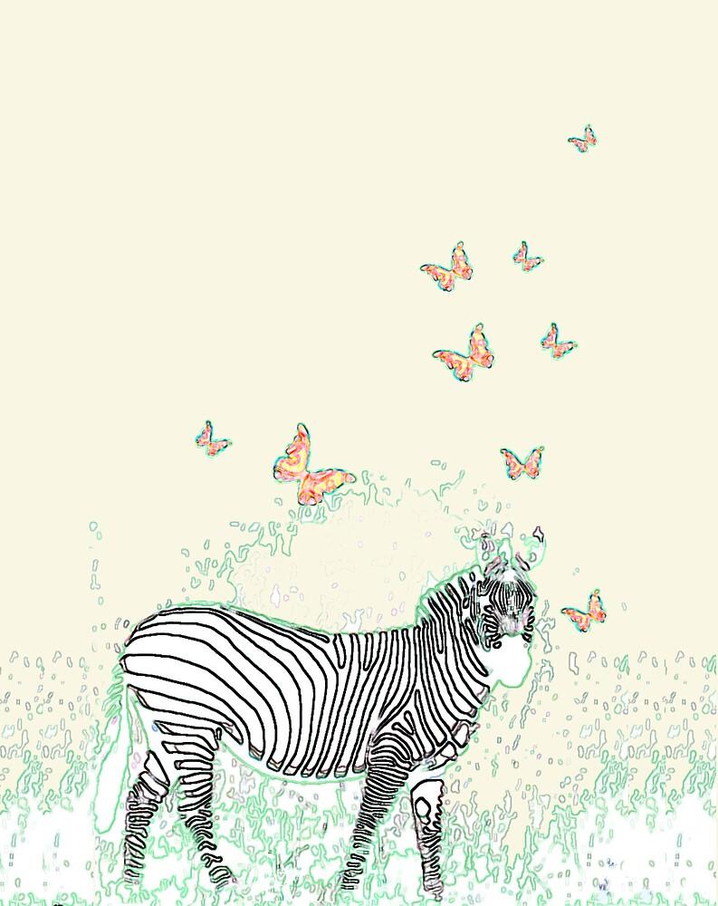 Zebra by Alana Hodgins