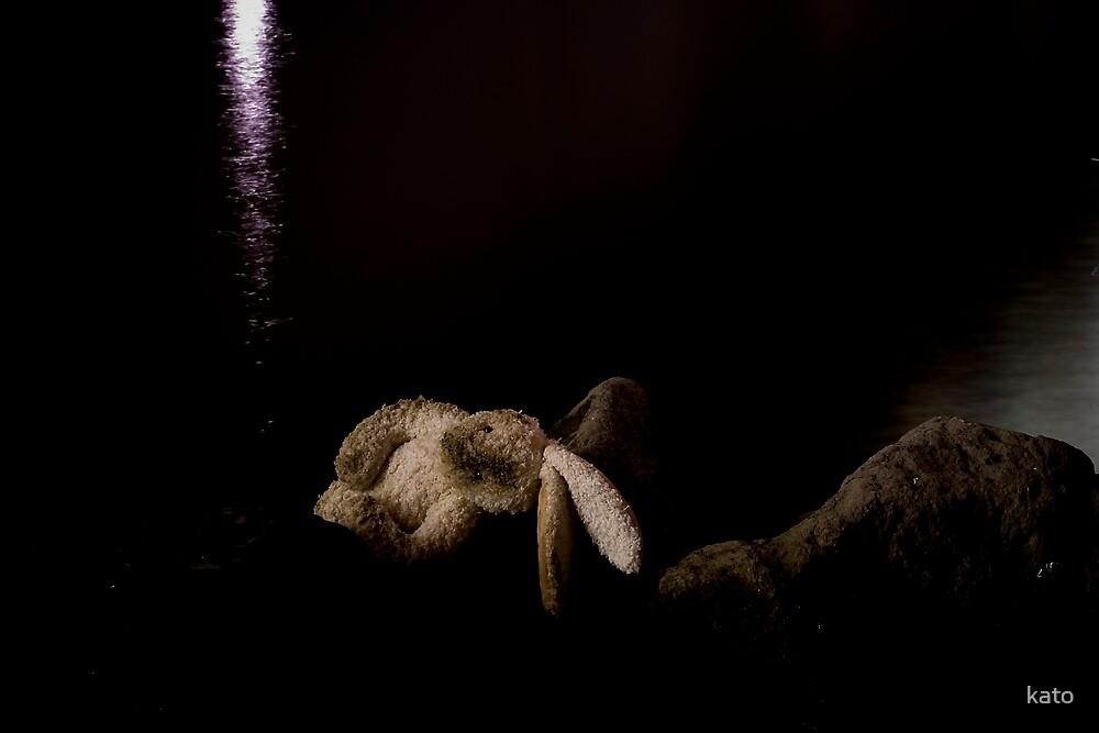 Opera bunny II by kato