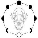 Wolf Skull by ashraae