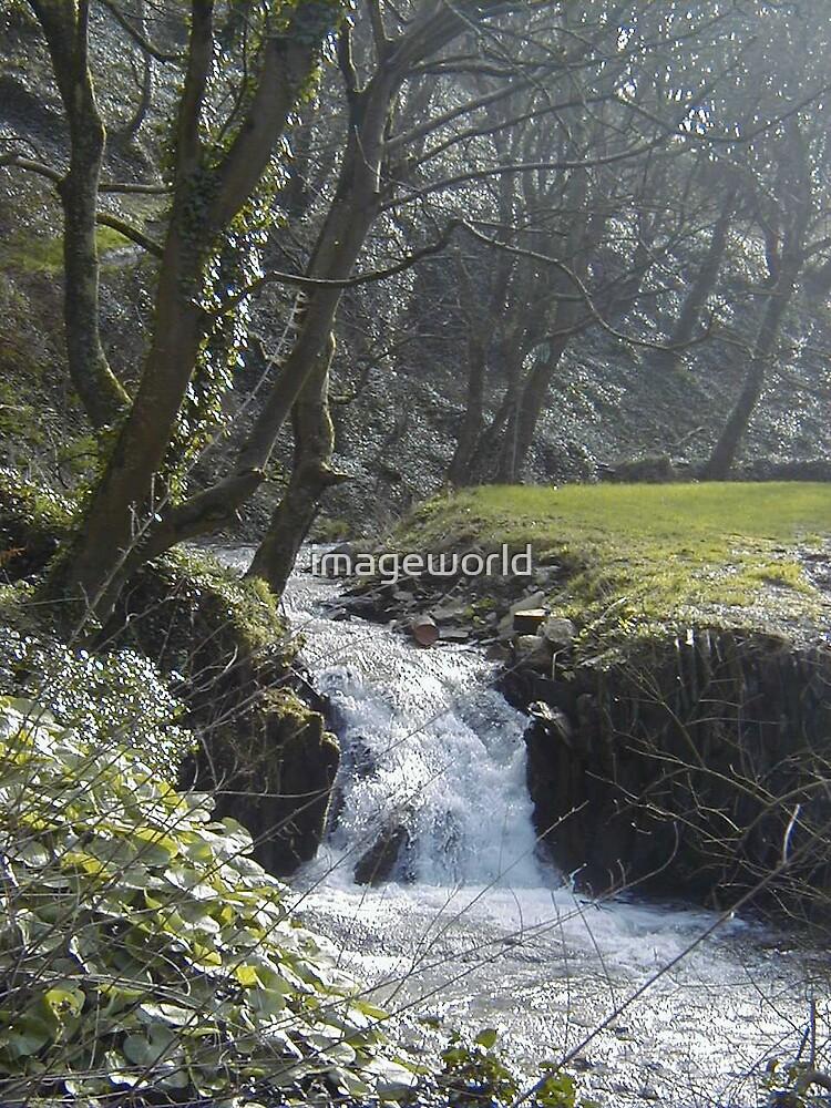 Valley Stream by imageworld