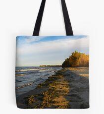 Sheldon Marsh - Autumn Beach 2 Tote Bag